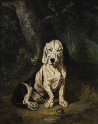 A seated basset hound, Constant Troyon